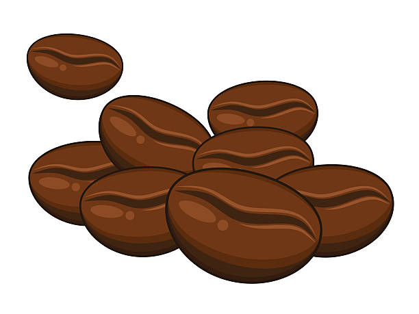 Collection Of 14 Free Bean Clipart Coffee Grain Aztec Elegant Beans.