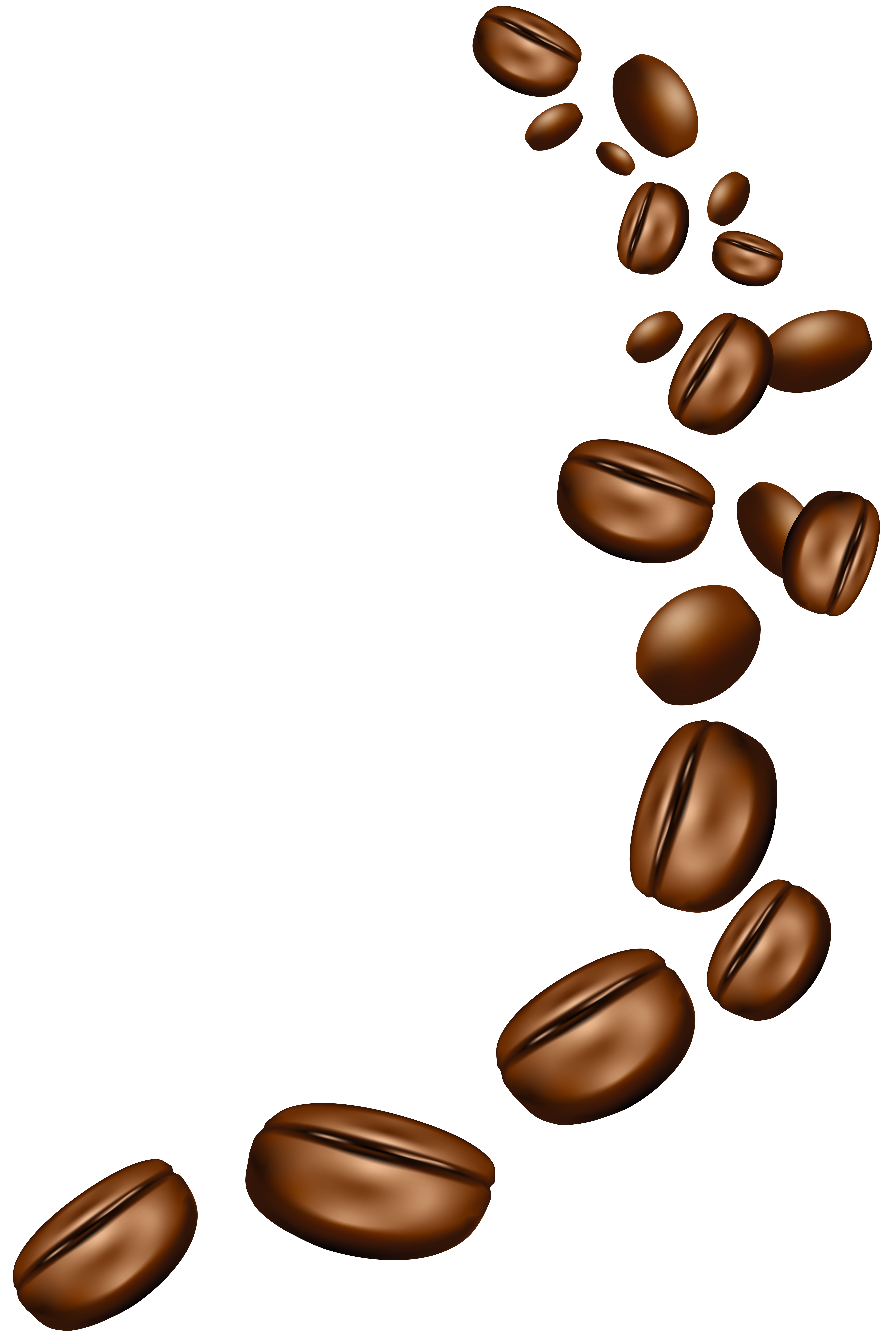 Coffee Beans PNG Clipart Image.