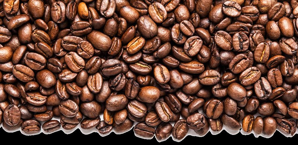 Coffee bean Cafe Clip art.