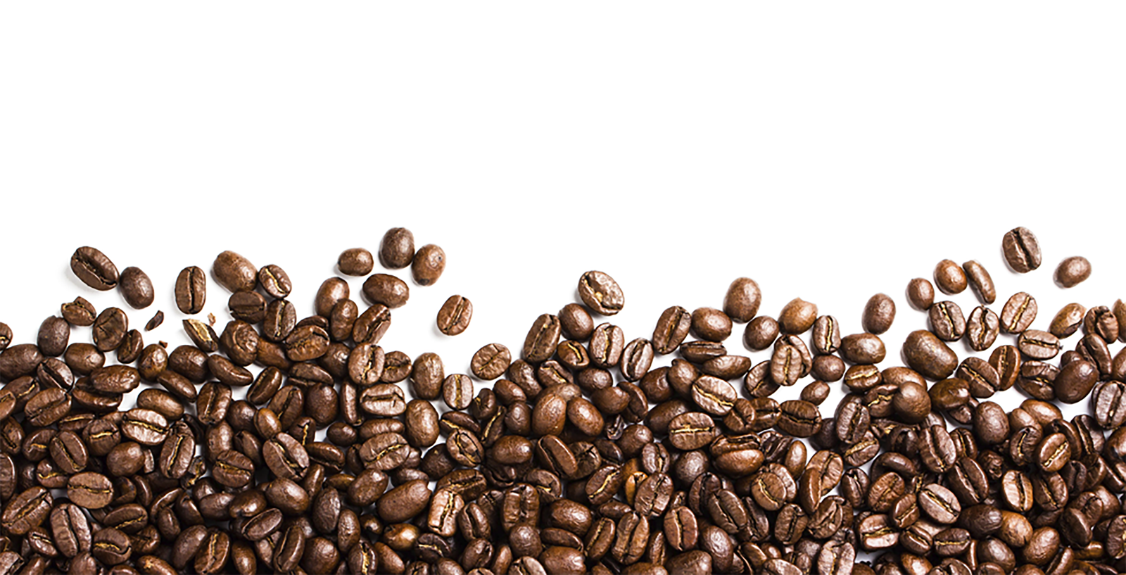 Coffee beans PNG images free download.