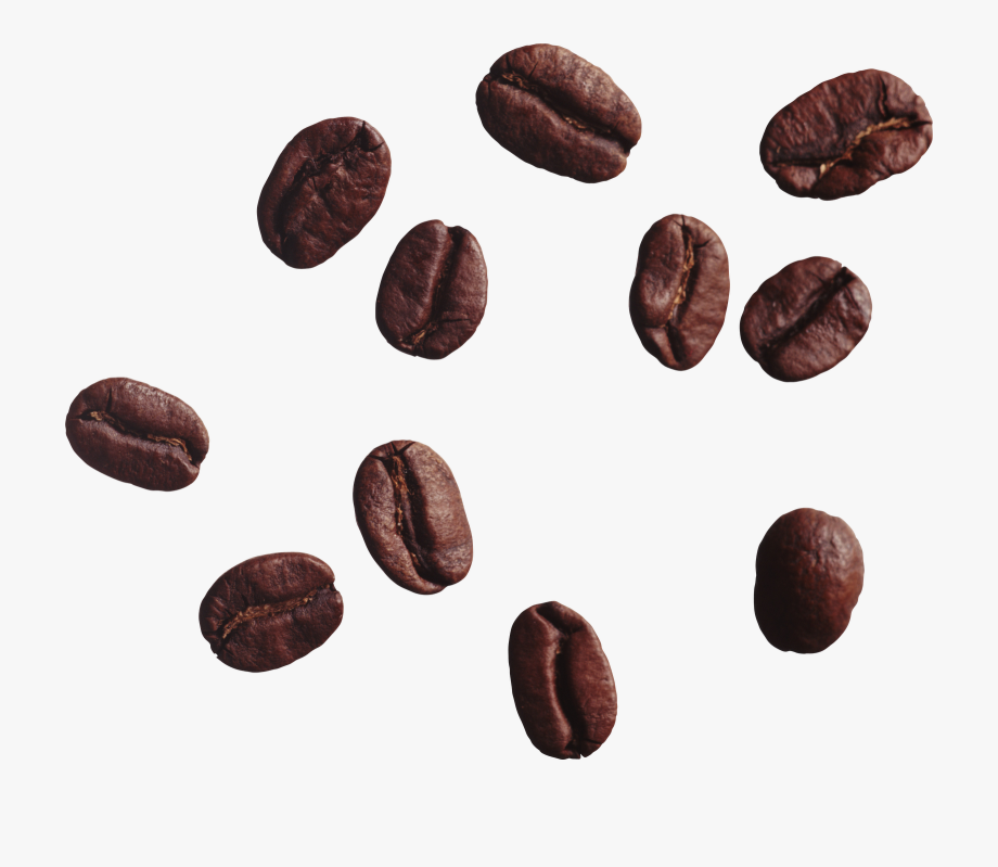 Coffee Bean Clipart , Transparent Cartoon, Free Cliparts.