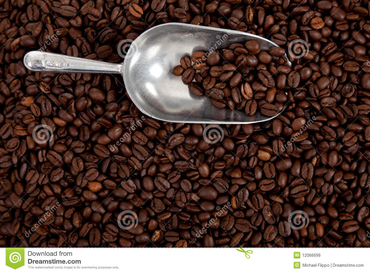 A Silver Scoop With Coffee Beans On White Stock Photos.