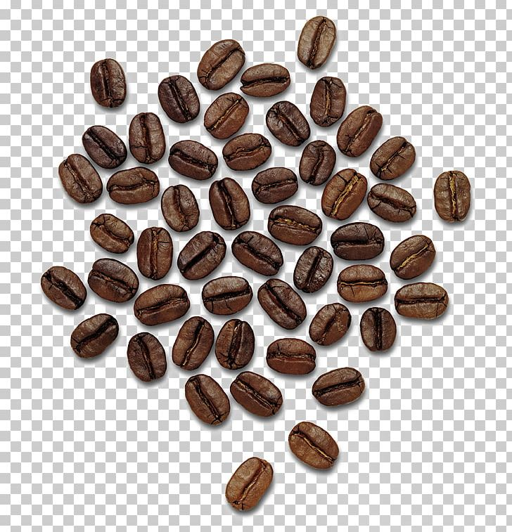 Coffee Beans PNG, Clipart, Coffee Beans Free PNG Download.
