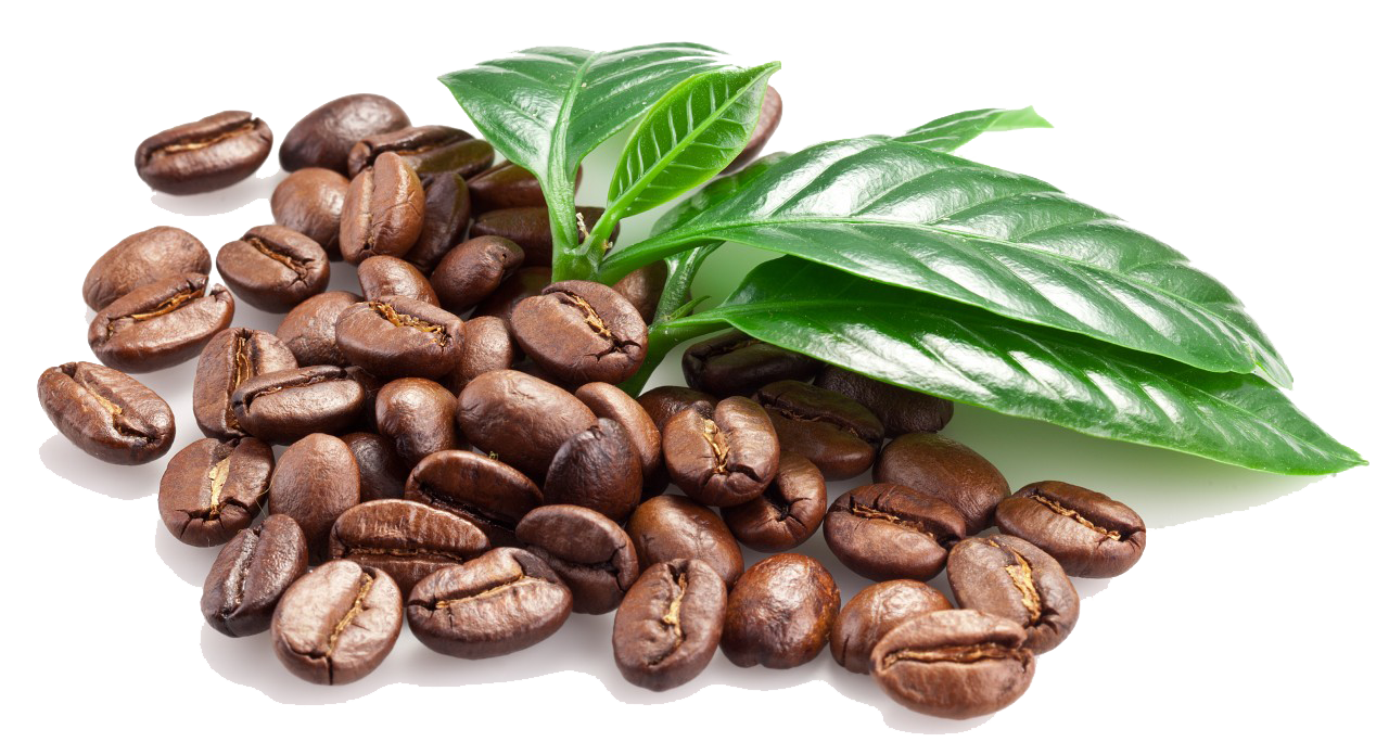 Coffee Beans PNG Transparent Coffee Beans.PNG Images..