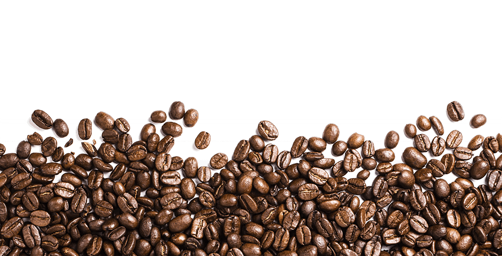 Coffee Beans Footer transparent PNG.