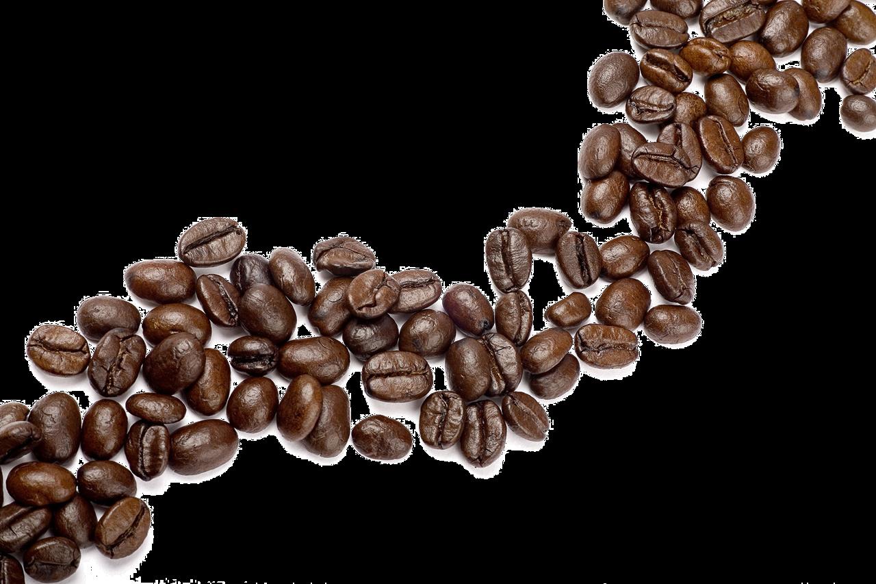 Coffee bean Cappuccino Cafe Single.