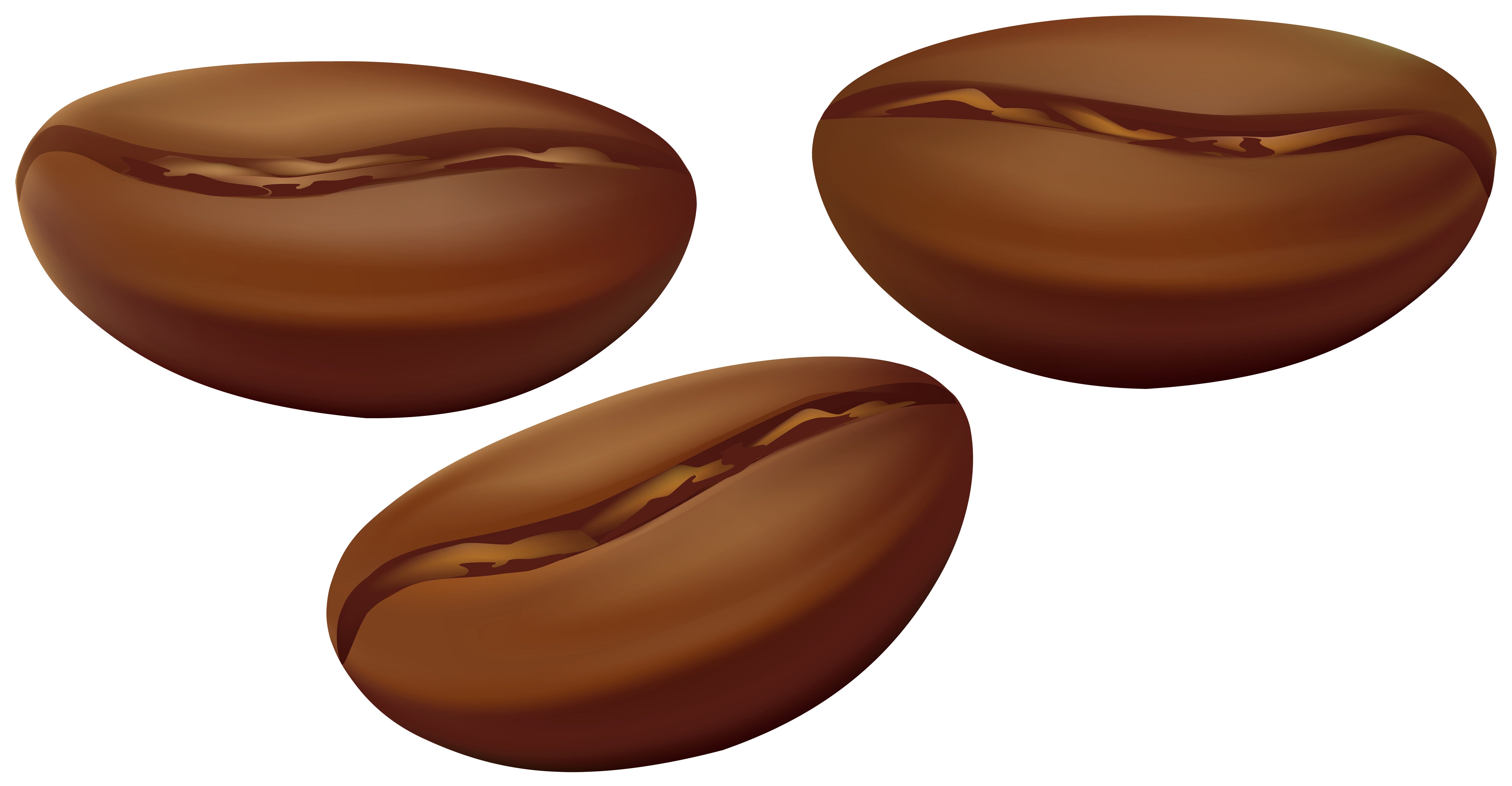 Beans clipart png.