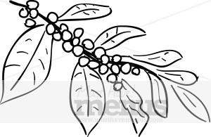 Coffee Plant Clip Art.