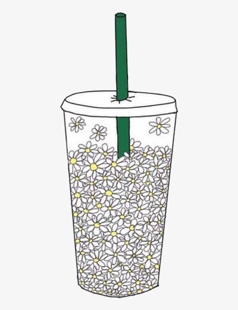 Drink Starbucks Coffee Cup White Flowers Daisy Aestheti.