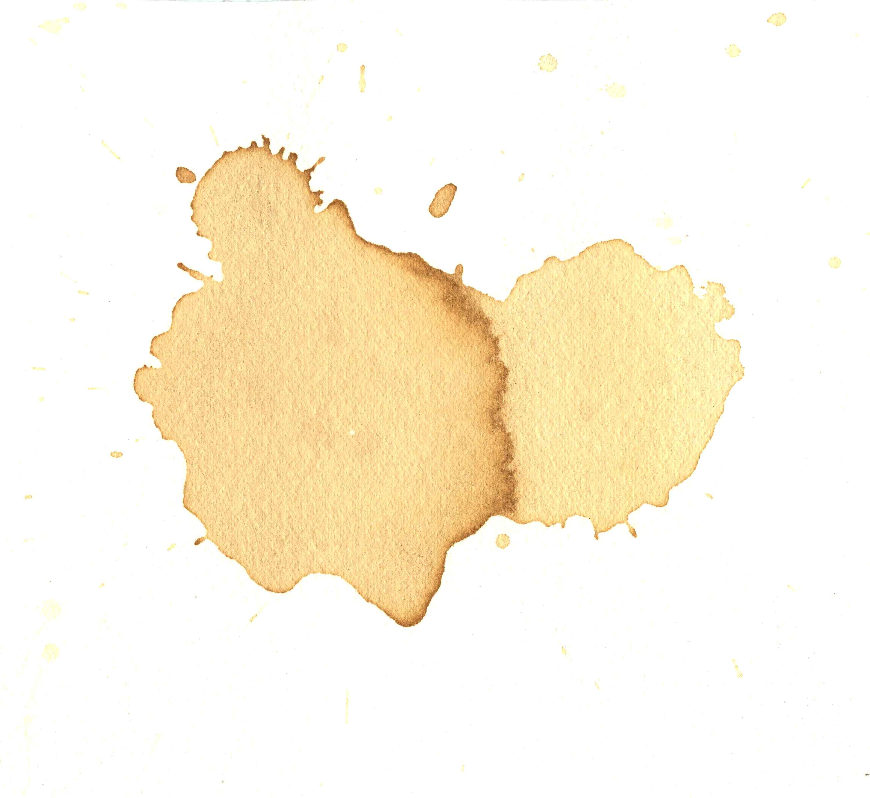 Coffee Stain Png (97+ images in Collection) Page 1.