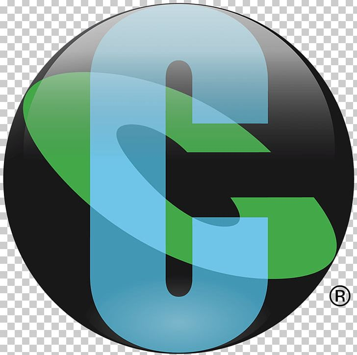 Cognizant Business Information Technology Consulting Service.