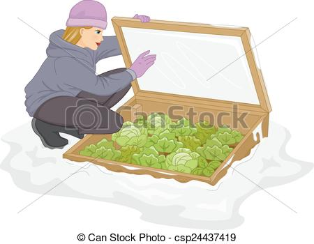 Vector Clip Art of Cold Frame Plants.
