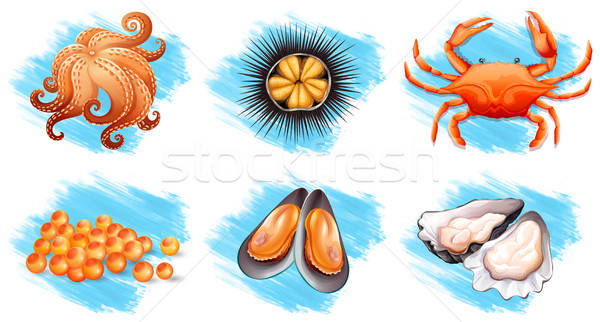 Different kinds of fresh seafood vector illustration.