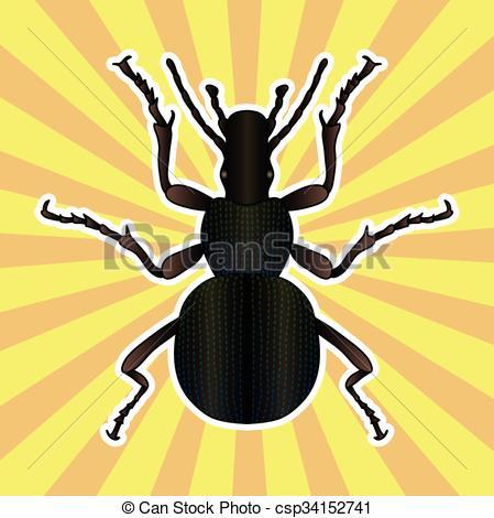 EPS Vector of Insect anatomy. Sticker ground beetle bug. Carabidae.