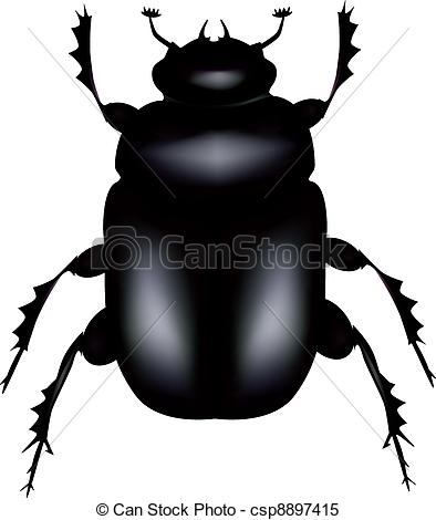 Coleoptera Illustrations and Clipart. 298 Coleoptera royalty free.