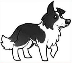 Free Collie Clipart.