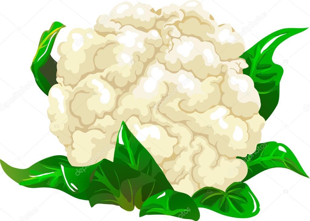 ᐈ Cauliflower clip art stock illustrations, Royalty Free.