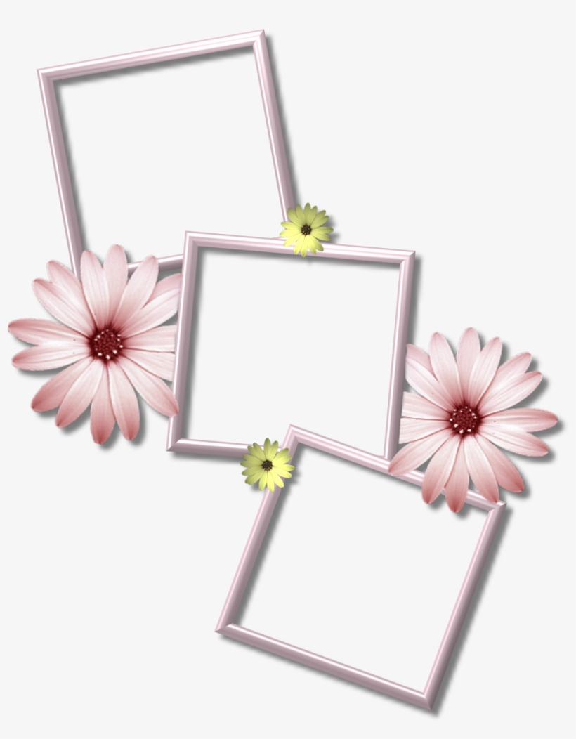 Collage Frame Png Picture.