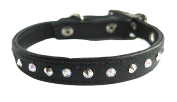 Dog collar PNG images free download.