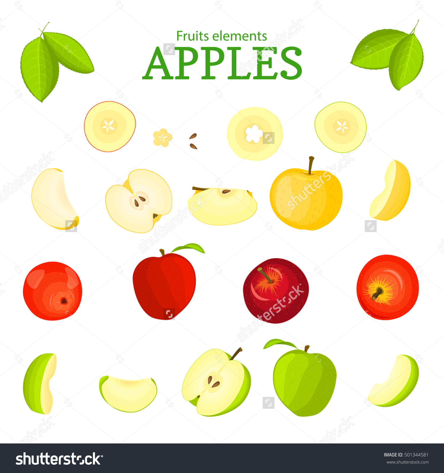 Vector Set Fruits Apple Fruit Whole Stock Vector 501344581.