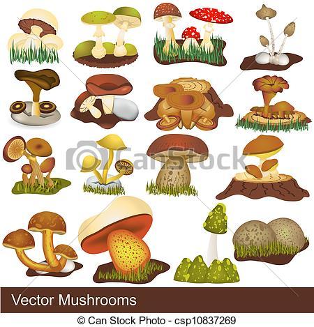 Clip Art Vector of vector mushrooms.