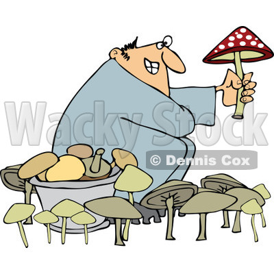 of a Man Picking Mushrooms One Being Poisonous.