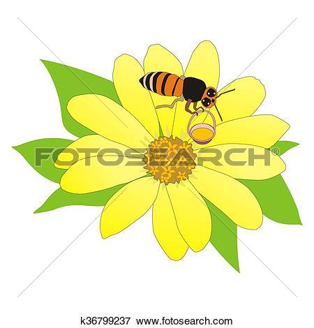 Stock Illustration of cartoon bee collecting nectar k36799237.