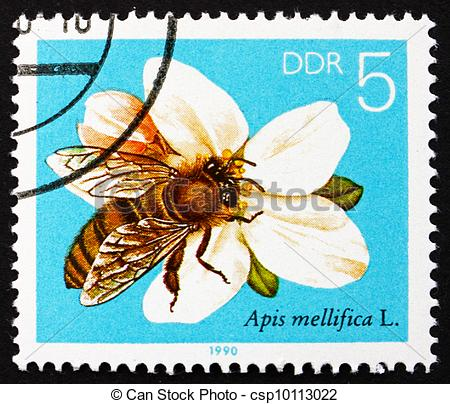 Stock Photo of Postage stamp GDR 1990 Apple Blossom, Bees.