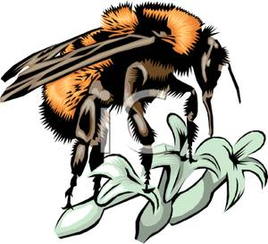 Collecting Pollen Bees Clip Art.