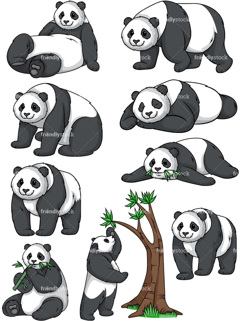 Panda Collection.