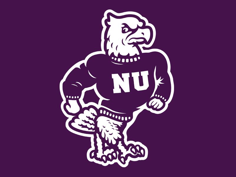 Niagara University Purple Eagles by Studio Lucha on Dribbble.
