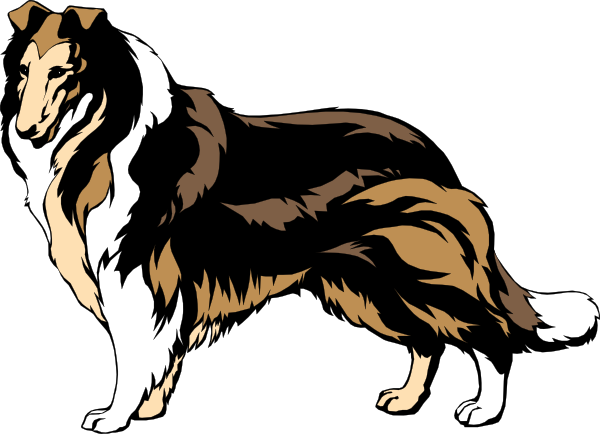 Black And Brown Collie Clip Art at Clker.com.