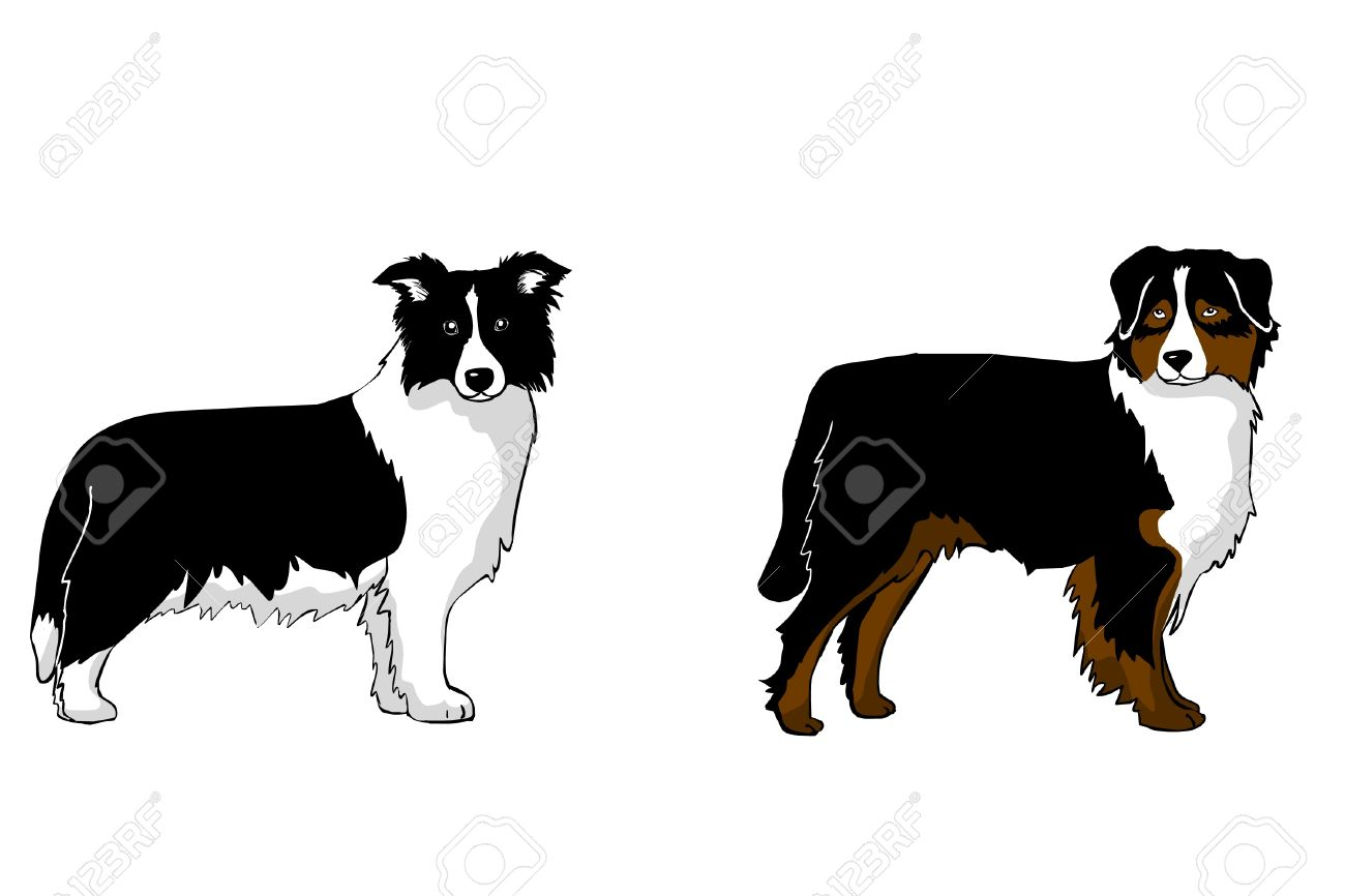 Collie clipart free 2 » Clipart Station.