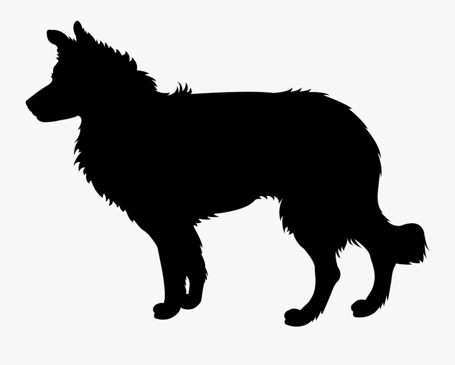 Border Collie Dog Silhouette , Free Transparent Clipart.