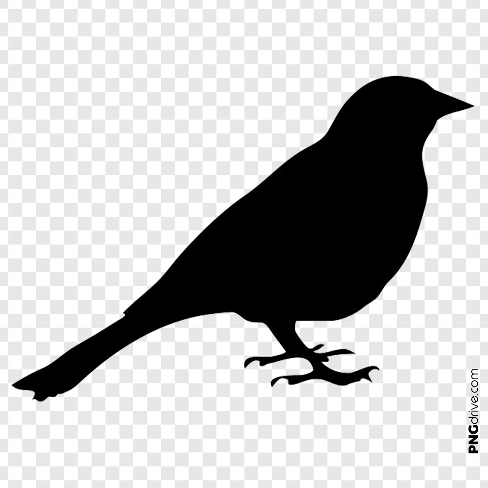 Vector Clipart Black Color Shade of Bird PNG Image.