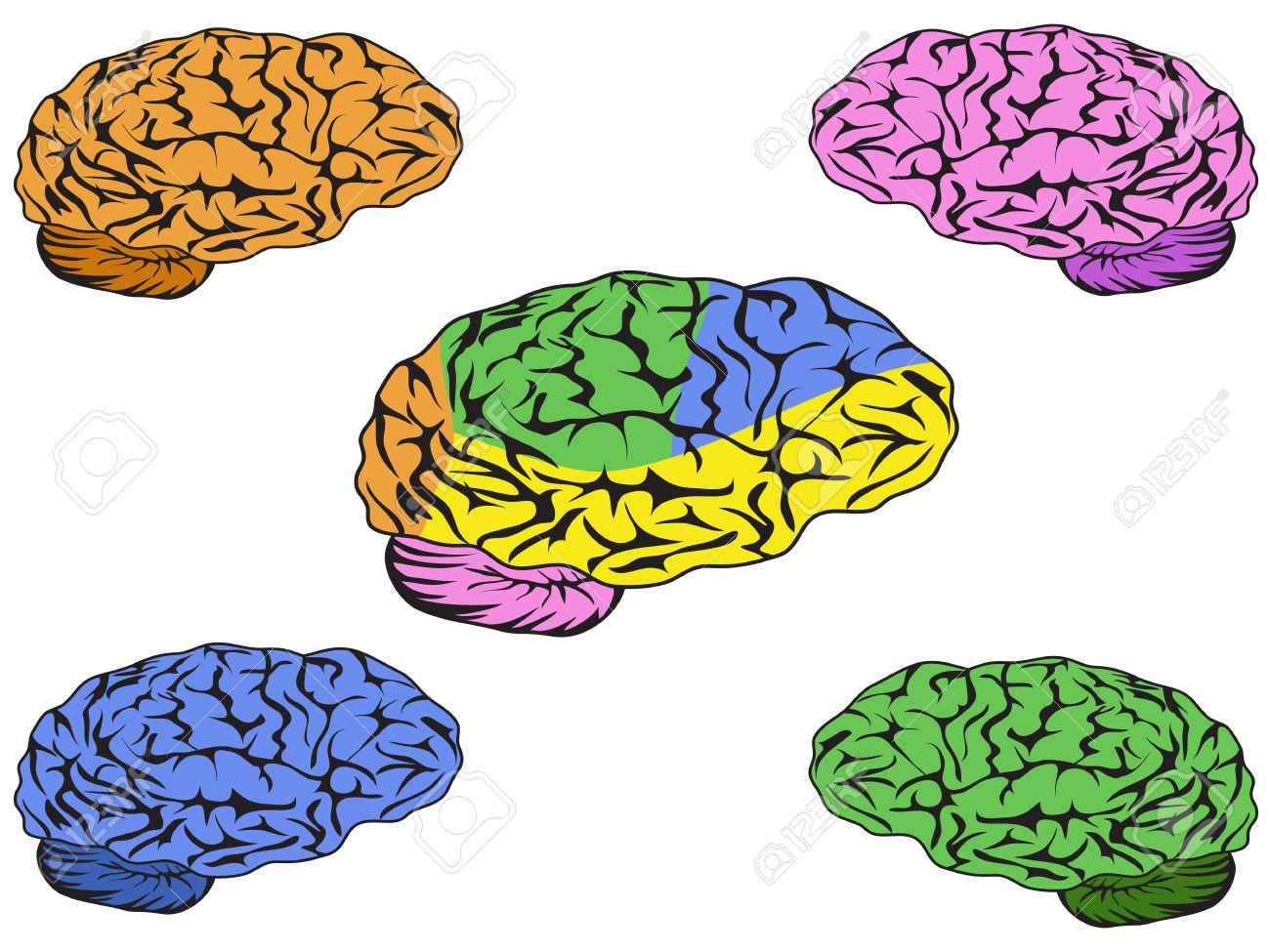 Color Brain Vector For Design Royalty Free Cliparts, Vectors, And.