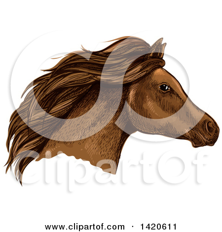 Clipart of a Sketched and Color Filled Brown Horse Head.