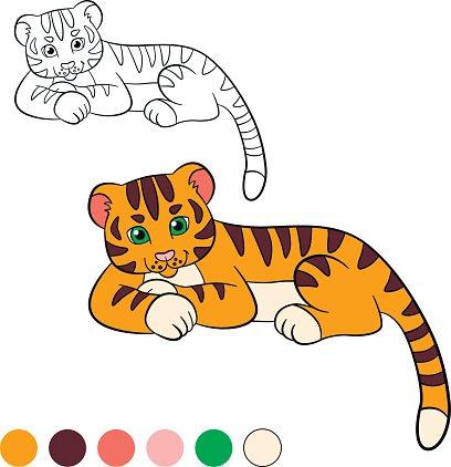 Malvorlagen. Color me: Tiger. Kleine niedliche Baby Tiger.