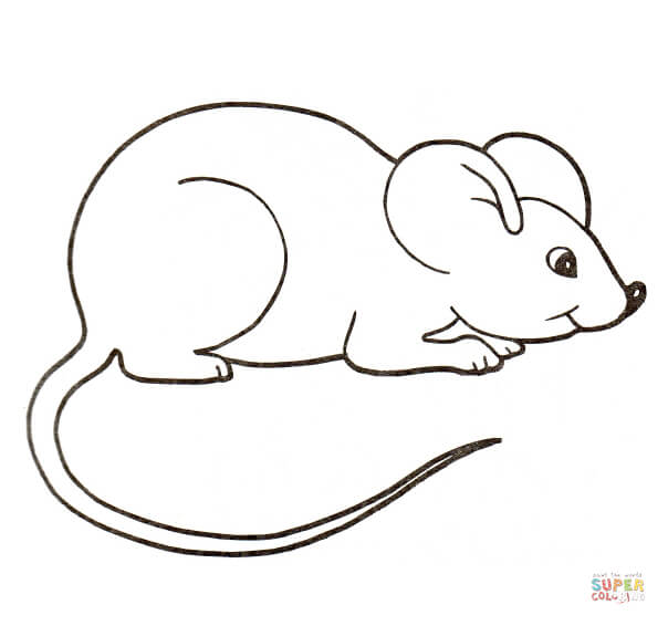 Color mouse clipart clipground for Rat coloring pages