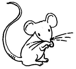 Pictures Of Mouse.