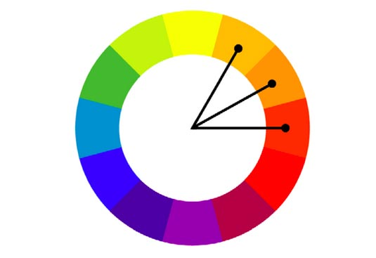 Graphic Designer Explains The Most Common And Successful Color.