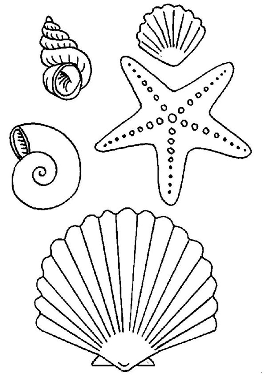 Download and Print seashell and starfish coloring pages.