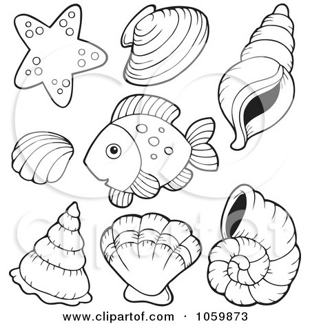 Royalty Free Seashell Illustrations by visekart Page 1.