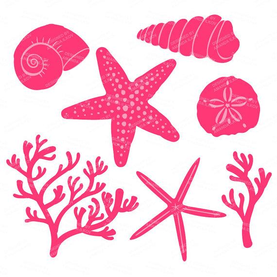 Premium Vector Seashells Clipart in Hot Pink Pink Seashells.