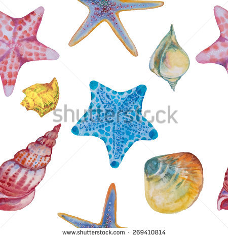 Vector Pattern Colored Sea Shells Starfish Stock Vector 269410814.