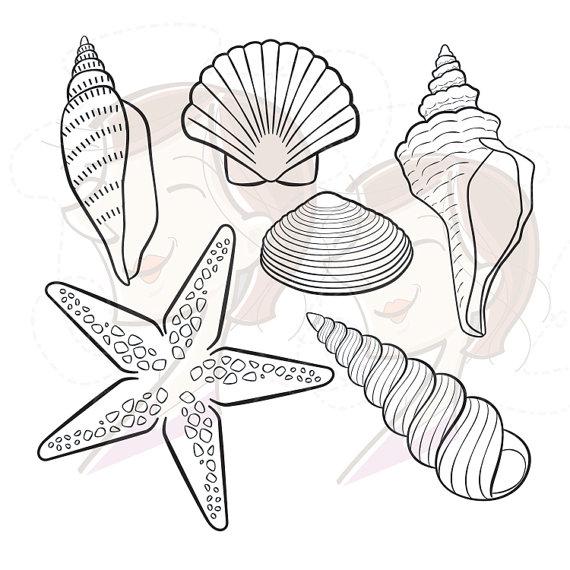 Digital Seashell Stamps Decor Starfish Summer Beach Vector Clip.