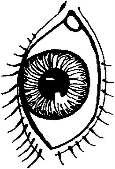 Preschool Eye Coloring Page With Eyes Pages Clipart Kid Free.