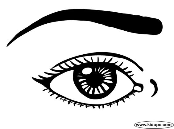 eyes coloring page eyes coloring pages clipart clipart kid to.
