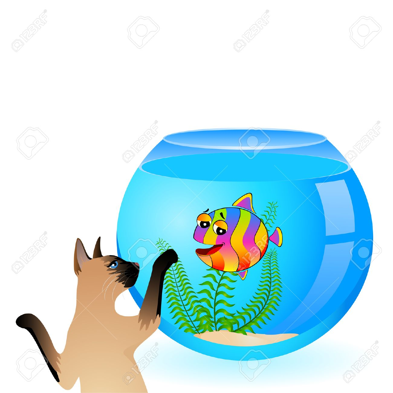 Cat With Little Colorful Tropical Fish In Aquarium Royalty Free.