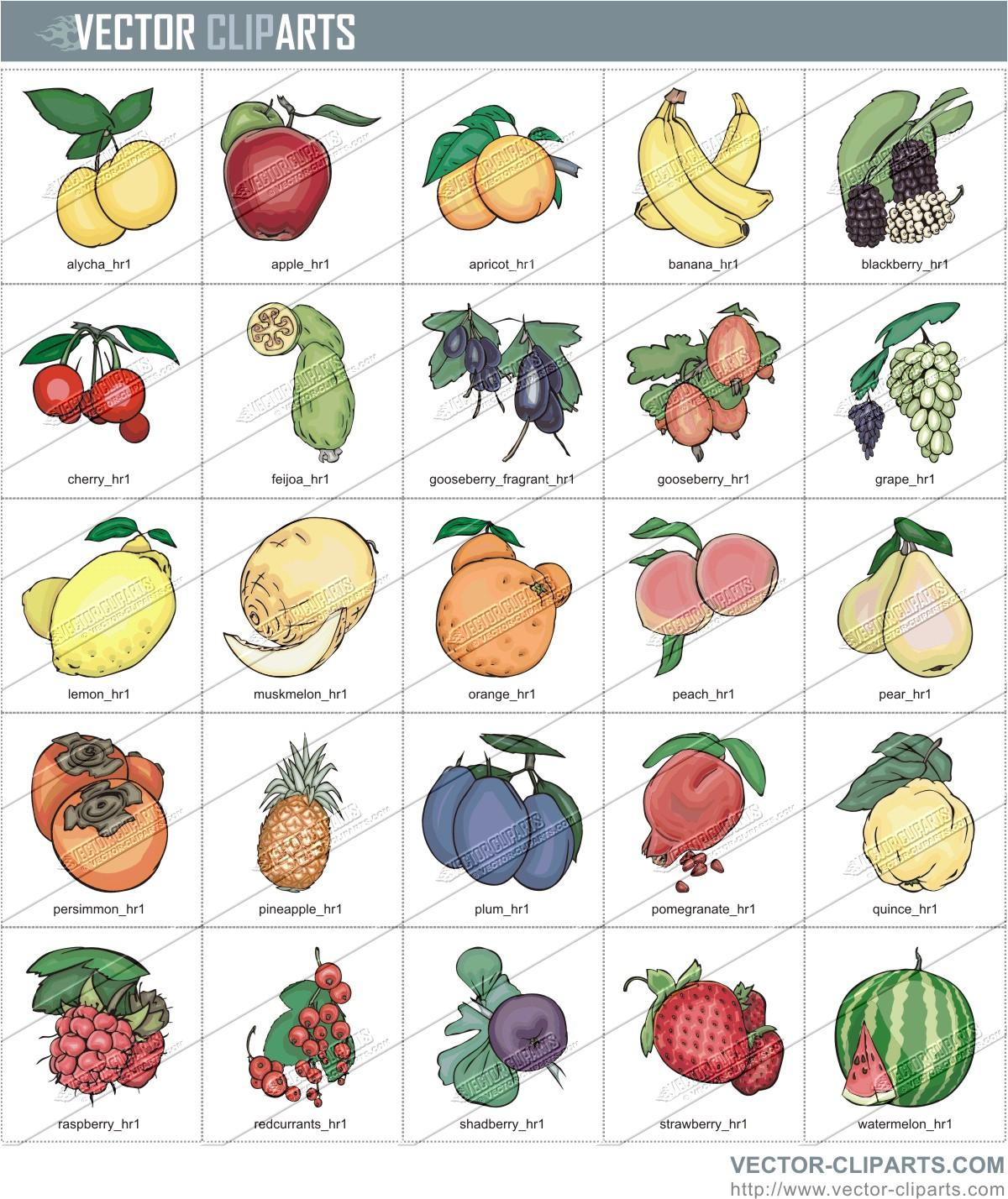 Fruits clipart to color.